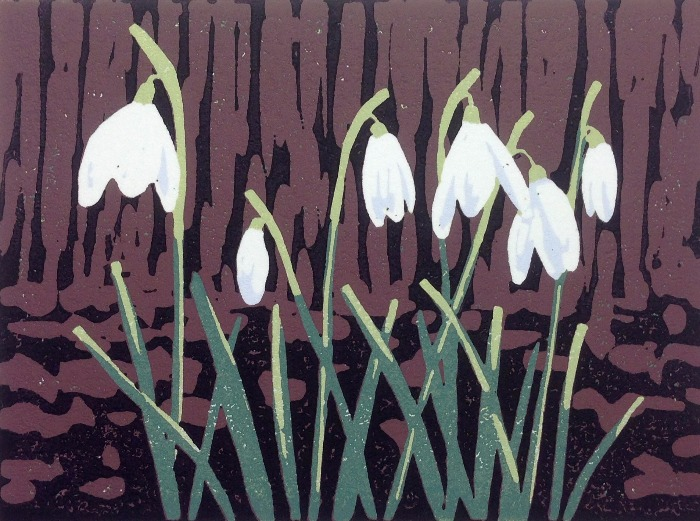 A Promise of Snowdrops by Alexandra Buckle