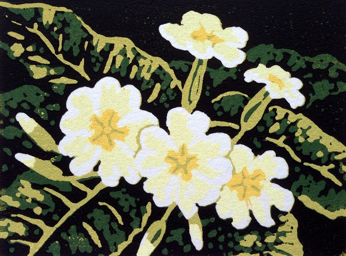 Primroses by Alexandra Buckle