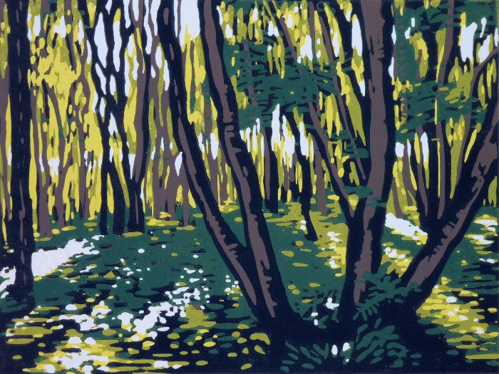 Stoke Wood in Summer by Alexandra Buckle