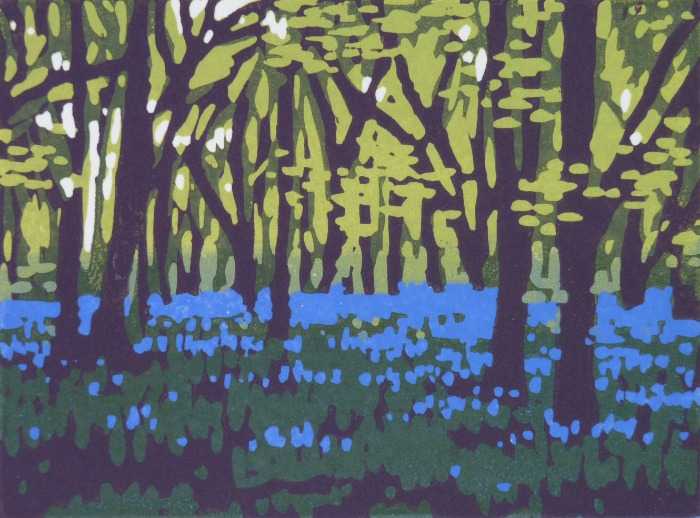 Mini Bluebells by Alexandra Buckle