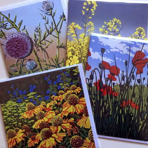 Greetings cards, set of four floral images by Alexandra Buckle