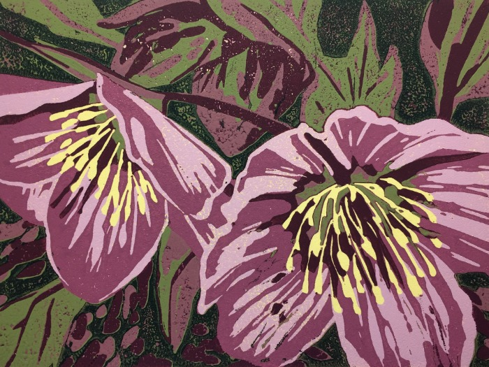 Woodland Hellebore by Alexandra Buckle