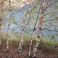 /library/uploads/Images_S8/2 Grasmere Birches.jpg