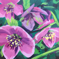/library/uploads/Images_S8/4 Woodland Hellebores painting 1.jpg