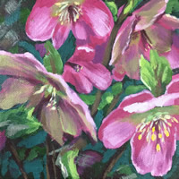 /library/uploads/Images_S8/4 Woodland Hellebores painting 2.jpg