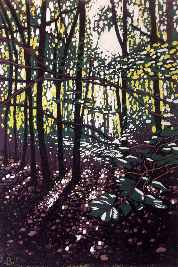 /library/uploads/Images_S8/WEB2SCALE Summer Woodland Glow.jpg